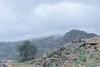 14370706-جبال سلا والعبادل محافظة العارضة-9 (عيسى النخيفي) Tags: جازان سلا العبادل العارضة مناضر كانون تصوير عيسى النخيفي امطار غيوم