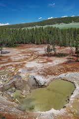 Sulphur Caldron Landscape (Yellowstone NP) (Kᵉⁿ Lᵃⁿᵉ) Tags: geo:lat=4462777505 geo:lon=11043302670 geotagged lake unitedstates usa adventure calciumcarbonate deadtrees explore exploring foulodor gas geothermallandscape grandlooproad hotspring hotsprings landscape mineraldeposition mineraldeposits mountain nationalpark nationalparkservice naturalwonder nature np nps overlook pinetree pond scenic scenicview sesspool sky steam stench stinky sulphur sulphurcaldron thermalfeature tourism touristattraction travel travelblog travelphotography travelingadventures trees usnationalpark usnationalparkservice unitedstatesnationalpark worldadventures worldtravel worldsfirstnationalpark wy wyoming yellowstone yellowstonenationalpark yellowstonenp ynp