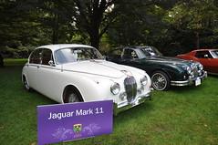 Jaguar Collection (3) (Gearhead Photos) Tags: jaguar mark 2 luxury supercar meet vancouver bc