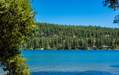 Donner Lake (randyherring) Tags: ca california historical nature donnerlake sierranevadamountains park donnermemorialstatepark recreational truckee unitedstates us