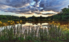 IMG_9504-05Ptzl1scTBbLGER (ultravivid imaging) Tags: ultravividimaging ultra vivid imaging ultravivid colorful canon canon5dmk2 clouds latesummer sunsetclouds stormclouds scenic rural rainyday pennsylvania pa pond landscape lateafternoon painterly