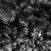 Sunlit Stream 006 (noahbw) Tags: d5000 kokosingriver nikon abstract blackwhite blackandwhite bw distortion forest light monochrome natural noahbw reflection ripples rocks shadow square stones stream summer sunlight water woods