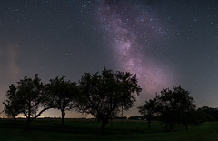 Apfelbaumallee (explored) (louhma) Tags: apfelbaumallee allee ebersberg milchstrase milkyway night nightsky longexposure panorama nikon d750 august 2017 explore explored