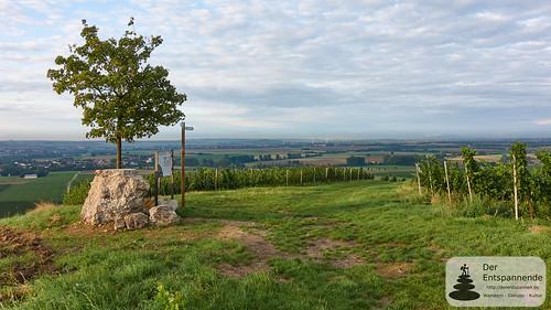 Selzstellung - Sonnenaufgang überm Selztal