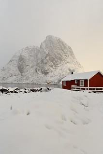 Tourist rorbu-traditional fishing cottage-Festhaeltinden mounts across the fjord. Hamnoy-Reine-Moskenesoya-Lofoten-Norway. 0353