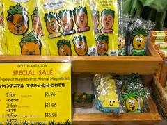 Dole Plantation (Disney Dan) Tags: autumn usa 2017 northamerica oahu travel hawaii september doleplantation america fall unitedstates unitedstatesofamerica