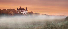 Old castle in morning. (Birgitta Sjostedt) Tags: landscape architcture building old ancient haze fog morning beauty magic birgittasjostedt mist grass sunset sky tree magicunicornverybest ie