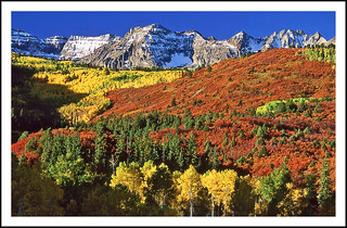 Serious Autumn Color - Southwest Colorado, 1993