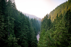 Over River 2 (Jeff Slinker) Tags: washington state mount rainier national park mountrainiernationalpark mountrainier morning dawn sunrise usa