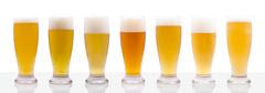 Daura Glasses Beer Family on white (Alvimann) Tags: