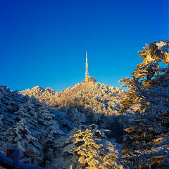 Mount Huang in RVP 50 (zr12345670) Tags: mediumformat 6x6 120 film zeiss hasselblad rolleiflex kodak fuji leica linhof rvp50 rdp3 rvp100 rdpiii provia100f velvia50 velvia100 500cm 503cw 28f 35f