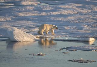 Baffin Island, Canada.