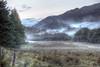 The Argyll Forest, by Ardentinny (Michael Leek Photography) Tags: argyllandbute argyll argyllforest lochlong mist fog rain scotland scotlandslandscapes westcoastofscotland westernscotland lochlomondnationalpark remote thisisscotland awesomescotland hdr highdynamicrange cowal cowalpeninsula secretscotland nature michaelleek michaelleekphotography