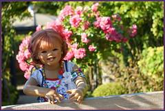 Sanrike ... unser Rosenresli ... (Kindergartenkinder) Tags: rosen sommer sanrike blumen personen grugapark essen kindergartenkinder garten blume park annette himstedt dolls