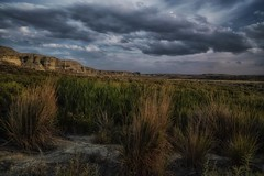 quiet before the storm... (Alvin Harp) Tags: jordanvalley oregon oregonscenicbyway us95 bluffs tallgrasses stormclouds naturesbeauty august 2017 sonyilce7rm2 fe2470mmf28gm cloudsstormssunsetssunrises alvinharp