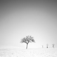 breath this air (ArztG.|Photo) Tags: black white mono square long exposure breath air snow fog minimalism fine art austria atmosphere arztg|photo yup