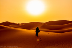 Towards the Sun (KASHIF QAISER) Tags: nikond5200 landscape outdoors colors desert sunset sky goldenhour silhouette sanddunes sand uae