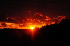 Sonnenuntergang (ingrid eulenfan) Tags: stralsund ostsee strelasund sonnenuntergang abendrot