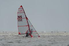 2017-07-31_Keith_Levit-Sailing_Day2105 (2017 Canada Games // Jeux du Canada 2017) Tags: canadasummergames gimli gimliyachtclub interlake keithlevitphotography manitobs sailing sailingdoublehanded29er winnipeg cgsailing 2017canadasummergames