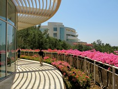 Getty Center, L.A., .17/3 (Basic LA) Tags: la losangeles socal southerncalifornia california gettycenter gettycentermuseum sepulvedapass brentwood museum