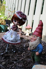 IMG_0536 (Dollymama2015) Tags: pullipmerl doll groovedoll redhead ginger lolitastyle dolldress handmadedollclothes sugarlattice gnome garden outdoors