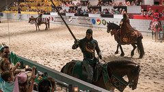 The green knight caught the ring. (kuntheaprum) Tags: medievaltimes dinnershow horse sword lance joust nikon d750 sigmaart 50mm f14