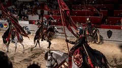 Putting on a world class performance. (kuntheaprum) Tags: medievaltimes dinnershow horse sword lance joust nikon d750 sigmaart 50mm f14
