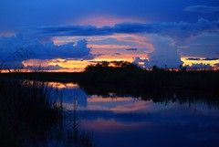 Blue Suede Shoes (PelicanPete) Tags: sunset afterglow blue glow reflection river cloudscape cloudburst shadow calm serene nature beauty natural hometown florida unitedstates usa floridaeverglades riverofgrass open space colorful angle dramatic composition summer2017 72817 outdoor sky distort southflorida broward coralspringsflorida dusk cloud water rainstorm levels heatwaves distortion strong intenseuplight landscapephotography artisticsunsetphotography cloudscapephotography weatherphotography field landscape rain coast shore backlit tryintoreasonwithhurricaneseason rainyseason darkskies skybeautyinthewild turbulent thunder bluepool red gold bluesuedeshoes drama elvishasleftthebuilding elvispresley theking sunrays5