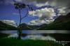 Buttermere tree (R0BERT ATKINSON) Tags: robatkinsonphotography nikond5100 sigma1020 leefilter lakedistrict buttermere buttermeretree trees water clouds cumbria