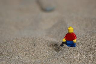 Bricks in the Sand