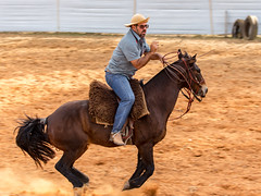 Com jeitinho (Ars Clicandi) Tags: brazil brasil parana jaboti prova do laço comprido peao peão boiadero boiadeiro cowboy paraná br