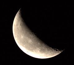 _MG_1014.CR2 (jalexartis) Tags: moon waning waningmoon waning419 dark afterdark night nightphotography nightshots lighting canonef400mmf56lusmlens canonextenderef2xiii 800mm 400mmx2