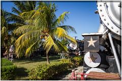Cuba 2016 - Museo de Agroindustria Azucarero #1 (Ulster79) Tags: himmel pflanzen zug flora outdoor palmtree sky steamtrain train transportation caibarién villaclara cuba cu