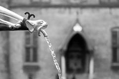 Spetteren op het Binnenhof (Bram Meijer) Tags: denhaag thehague zwartwit blackwhite blackandwhite nederland netherlands ridderzaal spetters parlement housesofparliament