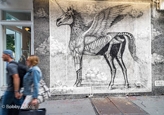 Alexis Diaz @ Rag & Bone nyc (ZUCCONY) Tags: streetart nyc 2017 newyork unitedstates us bobby zucco bobbyzucco pedro art arte mural murales