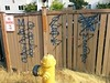 EVERY BODY KILLA (northwestgangs) Tags: everett snohomishcounty gangs ganggraffiti surenos crips
