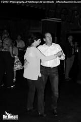 2017 Bosuil-Het publiek bij Steady State 4-ZW