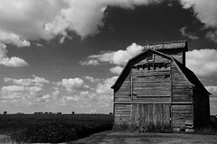 My Favorite Barn - Rochelle IL (Meridith112) Tags: august 2017 il illinois iowa blackandwhite bw mono summer nikon nikon2485 nikond610 midwest barn building rochelle farm lincolnhighway highway38 38