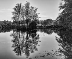 Trees in Reflection (chris watkins wales) Tags: le parc botanique de haute bretagne reflection landscape trees black white lake france