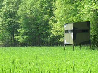 Alabama Luxury Whitetail Hunt 15