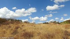 Summertime in Algarve countryside, Portugal (Valter Jacinto | Portugal) Tags: europe portugal algarve castromarim odeleite paisagem landscape verão summer summertime nuvens clouds countryside geo:region=europe geo:country=portugal nikoncoolpixp900 p900
