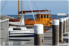 ©  • Barth / Hafen Impressionen • (M.A.K.photo) Tags: barth hafen ostsee balticsea germany deutschland mecklenburgvorpommern nikon harbor sonne meer september boote holzboote woodenboats boats