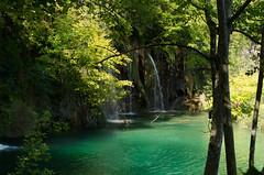 Plitvice (rmstark3) Tags: water tree forest river plitvice national park croatia