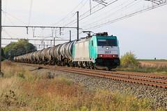 Lineas 2837 - E186 229-1 Ezemaal 21-09-2017 (Break302) Tags: traxx reeks282 reekse186 lijn36 cargo ketelwagens vtg