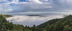 *Summer mist from above*-*Sommernebel von oben* (Albert Wirtz @ Landscape and Nature Photography) Tags: albertwirtz panorama panoramic mosel moseltal moselle mosellevalley summer sommer moseleifel eifelmosel eifel südeifel weinberge brume brouillard nebel fog mist nebbia niebla bruma sommernebel summermist mehring rheinlandpfalz rhinelandpalatinate deutschland germany fünfseenblick 5seenblick hunsrück eifelberge kulturlandschaft poelich detzem mehringerschweiz