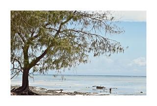 The Quiet Beach