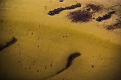 Banana Skin (Ignacio M. Jiménez) Tags: ignaciomjiménez macromondays stayinghealthy platano banana piel skin amarillo yellow 7dwf