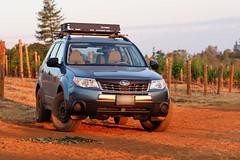 2012 Subaru Forester 2.5x (donaldgruener) Tags: subaruforester subaru forester sh 2012 25x offroad vineyard georgetown california dawn