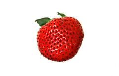 2017 Sydney: Strawberry (dominotic) Tags: 2017 strawberry red white highkey macromondays whitebackground sydney australia yᑌᗰᗰy