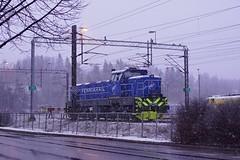 DSC07338